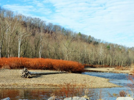fishing creek 1