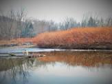 fishing creek 8